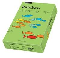 PAPYRUS Multifunktionspapier Rainbow, A4, 160 g/qm, grün