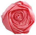 Krepp-Papier, (B)500 mm x (L)2,5 m, rosa