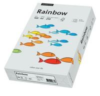 PAPYRUS Multifunktionspapier Rainbow, A4, 160 g/qm, hellgrau