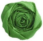 Krepp-Papier, (B)500 mm x (L)2,5 m, grün