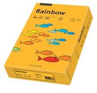 PAPYRUS Multifunktionspapier Rainbow, A4, 160 g/qm, mittelorange