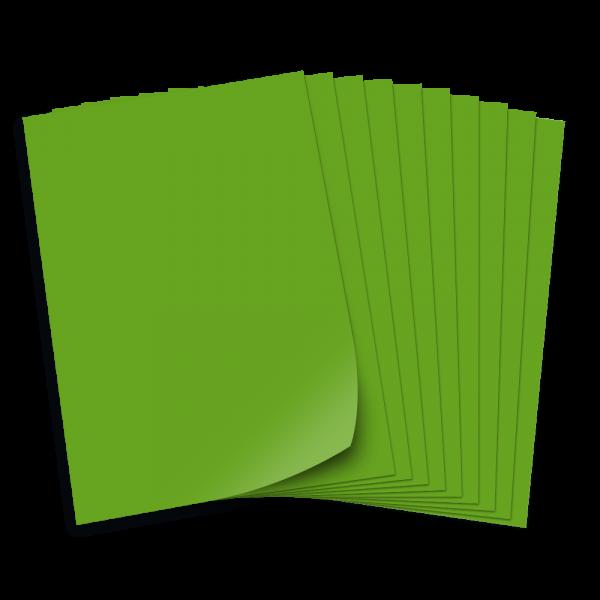 Tonpapier 130g/qm, DIN A3, 50 Bogen, minzgrün