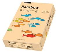 PAPYRUS Multifunktionspapier Rainbow, A4, 160 g/qm, lachs