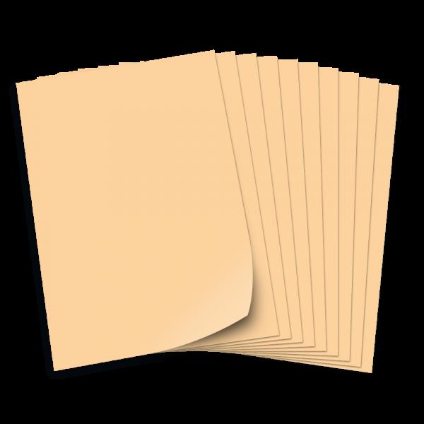 Tonpapier 130g/qm, DIN A3, 50 Bogen, chamois
